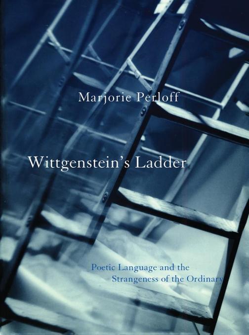 Wittgenstein's Ladder