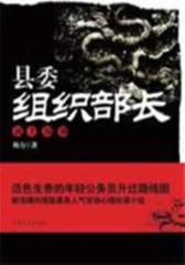 县委组织部长②(试读本)