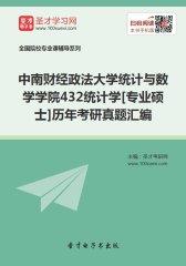 中南财经政法大学统计与数学学院432统计学[专业硕士]历年考研真题汇编