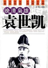 晚清枭雄袁世凯(试读本)