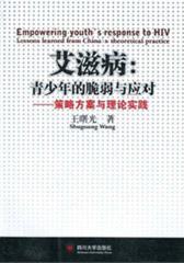 艾滋病:青少年的脆弱与应对:策略方案与理论实践