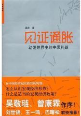 见证通胀:动荡世界中的中国利益(试读本)