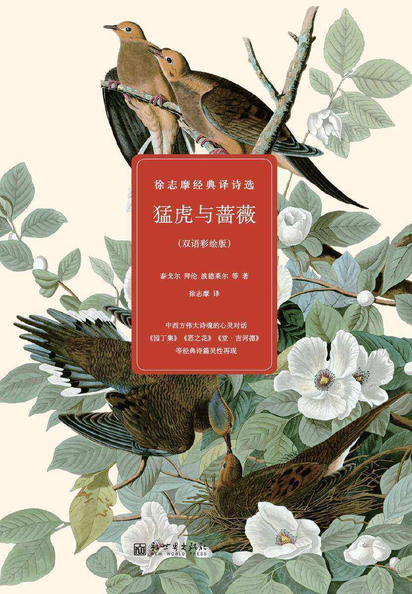 猛虎与蔷薇:徐志摩经典译诗选(彩绘版)