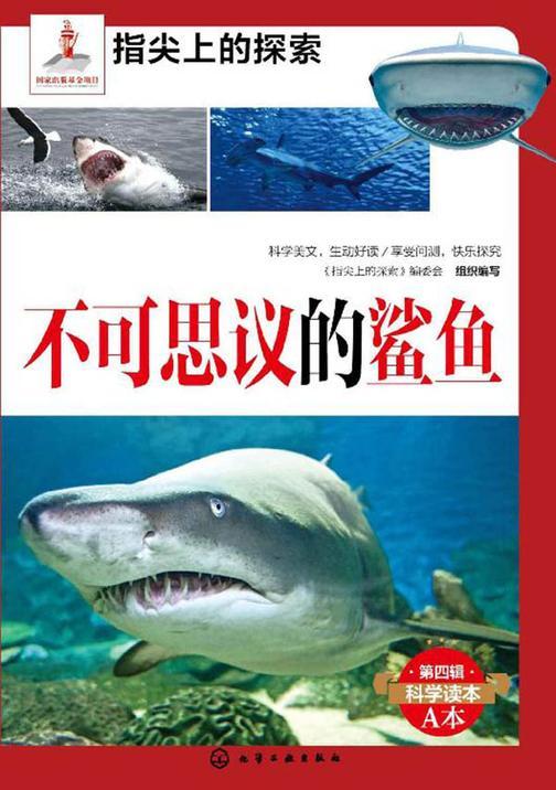 不可思议的鲨鱼