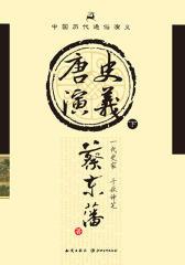 中国历代通俗演义:唐史演义(下)