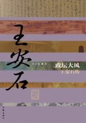 政坛大风:王安石传