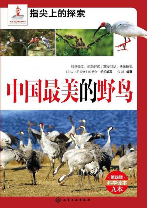 中国最美的野鸟