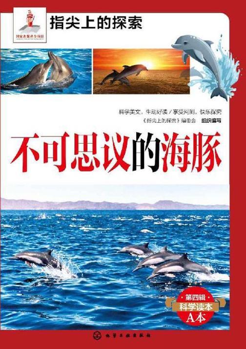 不可思议的海豚