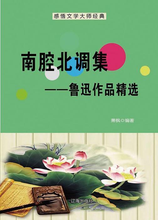 南腔北调集——鲁迅作品精选