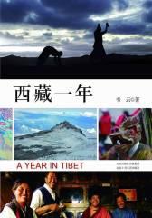 西藏一年(试读本)