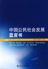 中国公民社会发展蓝皮书(仅适用PC阅读)